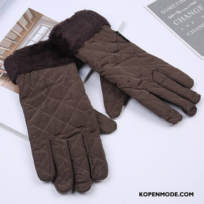 Handschoenen Heren Outdoor Groot Fijne Blijf Warm Touchscreen Geruit Bruine