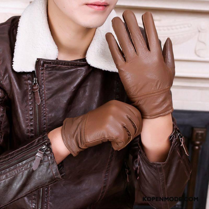 Handschoenen Heren Speciale Schapenleer Verdikken Zuiver Paardrijden Echt Leer Bruine