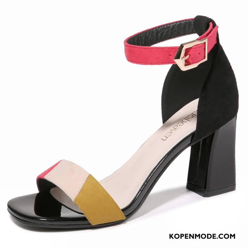 Sandalen Dames Vrouwen Trend Sandaal 2018 Zomer Vierkante Gemengde Kleuren Zwart