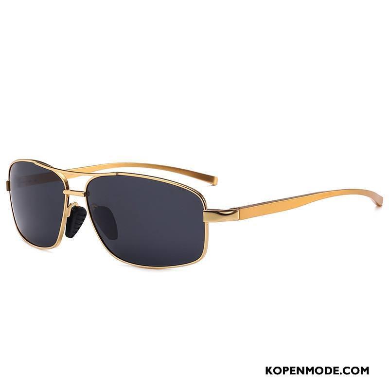 Zonnebrillen Heren Autorijden Nachtzicht Vierkante Aluminium Magnesium Paardrijden Mannen Gouden